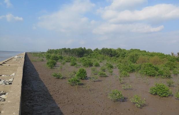 EU and France help Vietnam towards a green future hinh anh 1