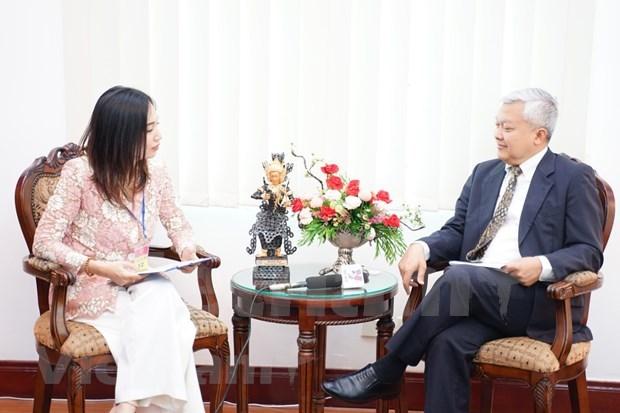 Indonesian Ambassador: Vietnam ensures ASEAN cooperation process despite COVID-19 hinh anh 1
