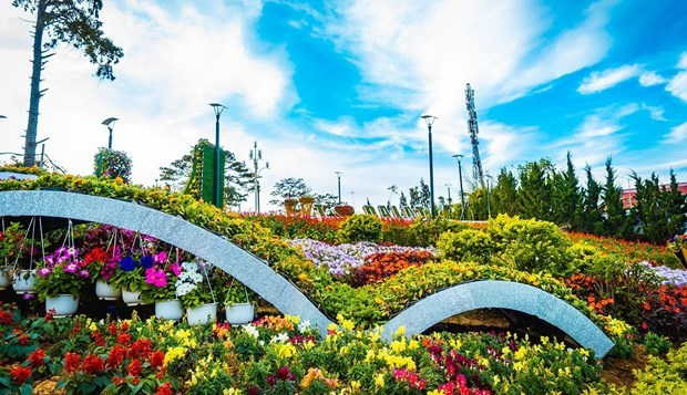 Ideal destinations for visitors during Tet holiday hinh anh 7