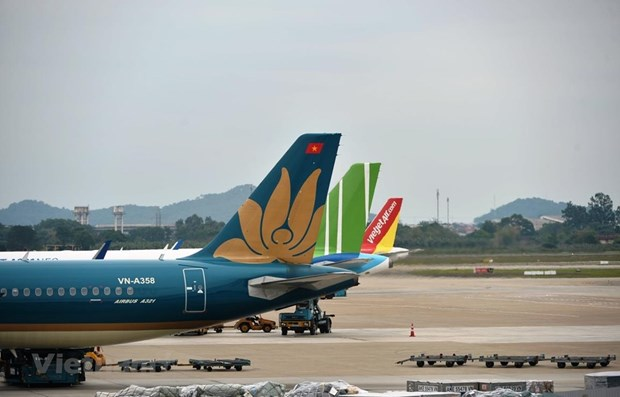 Airlines ready for reopening of international routes hinh anh 1
