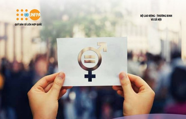 Law on Gender Equality conforms to international standards on human rights hinh anh 1