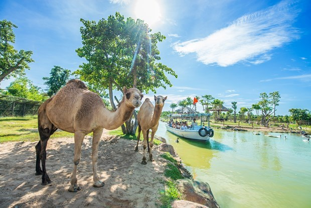 Vietnamese tourism requires a master programme hinh anh 5