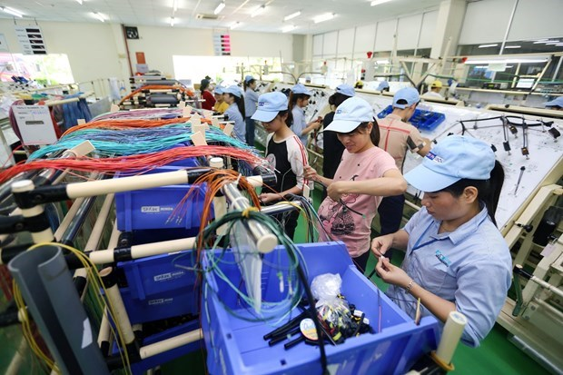Vietnam benefits from the 'wheel of globalisation': experts hinh anh 1