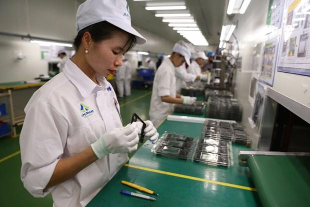 RCEP: local enterprises stepping firmly forward hinh anh 2