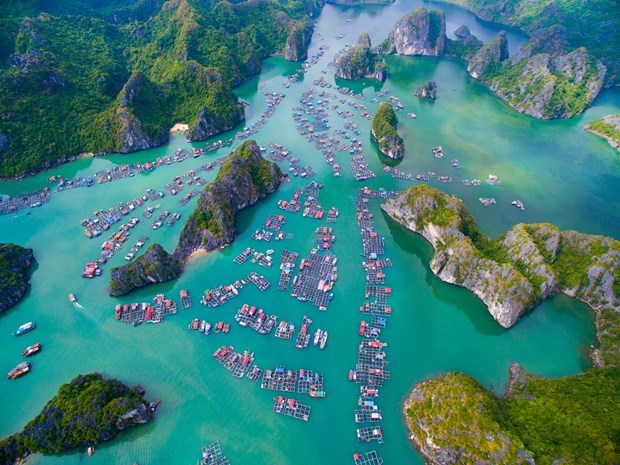 Vietnamese tourism - From zero to Number 1 hinh anh 1