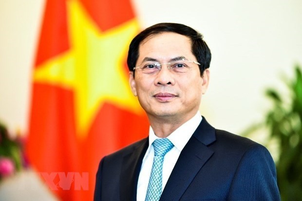 Int'l economic integration a bright spot in Vietnam's external affairs: Deputy FM hinh anh 1