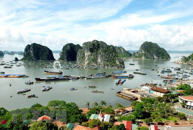 Vietnamese firms to tackle plastic pollution in Ha Long Bay hinh anh 1