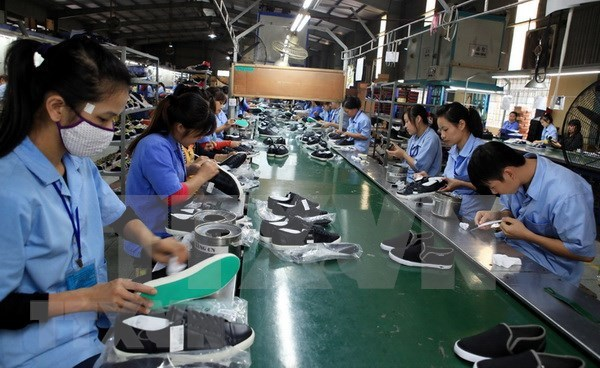 Measures sought to help footwear industry get back on front foot hinh anh 1