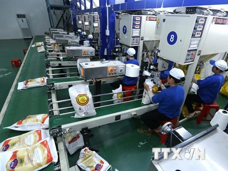 Rice exports to see bright outlook this year hinh anh 2