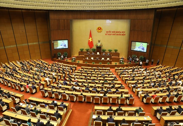 Minister elaborates on priorities for Vietnam's diplomatic sector hinh anh 2