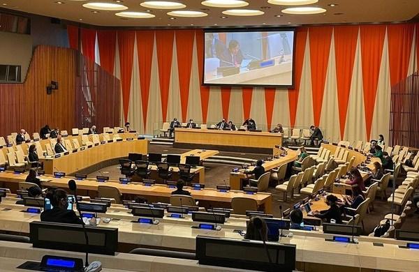 Presidency of UNSC in April marks a new milestone in Vietnam's diplomacy hinh anh 4