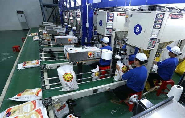 Expert: Vietnam's FTAs driving up exports-imports hinh anh 2