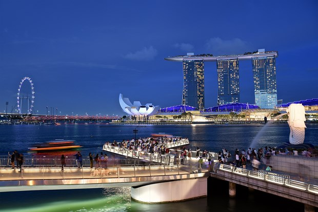 Discovering busy marina cities around the world hinh anh 3