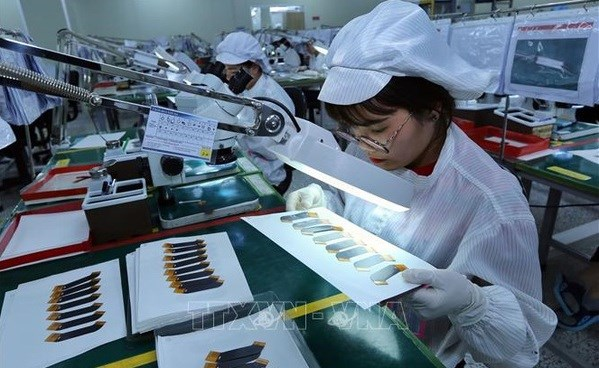 Vietnam posts high economic growth in six months despite COVID-19 hinh anh 1
