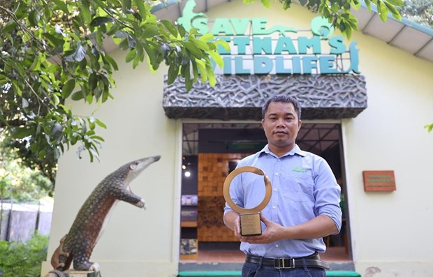 The layer of foundation for pangolin preservation in Vietnam hinh anh 1