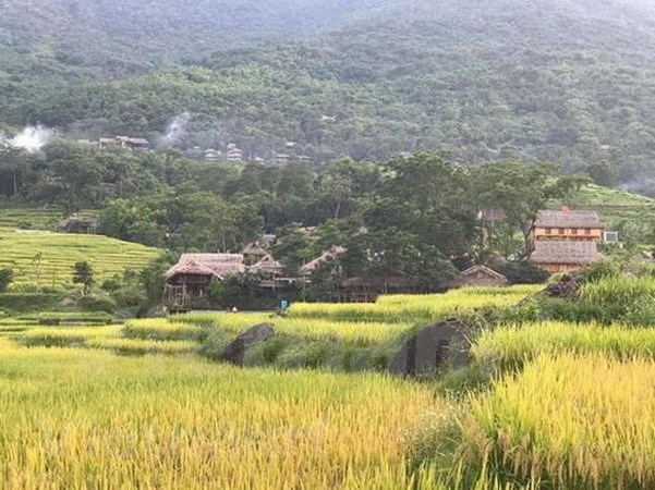 Pu Luong – a paradise amidst jungle for travellers on budget hinh anh 2