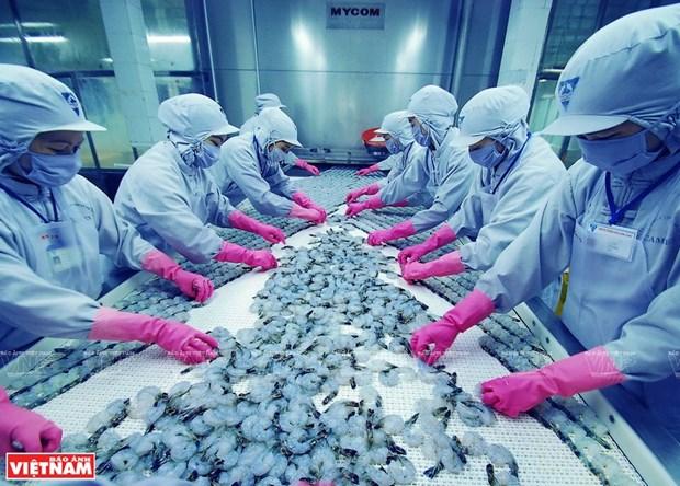 Vietnam strives for over 4 billion USD in shrimp exports hinh anh 2
