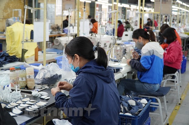 Vietnam earns 10.4 billion USD from footwear exports in H1 hinh anh 1