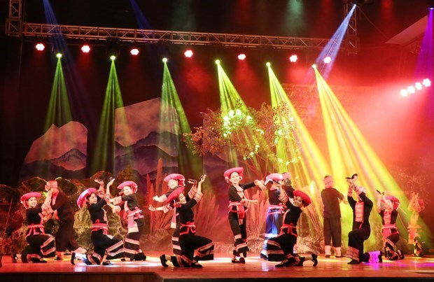 Online theatre helps performing arts come closer to audiences amidst COVID-19 hinh anh 2