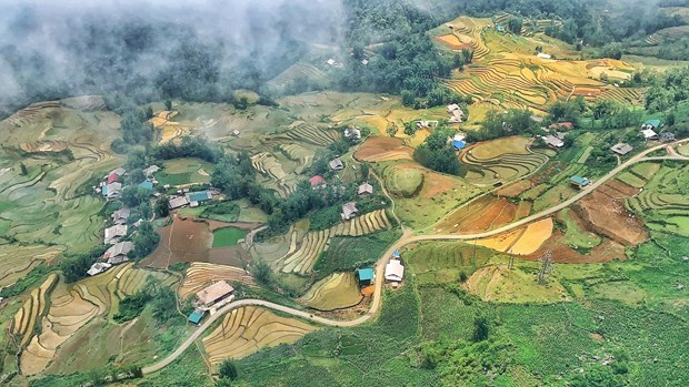 Vietnam aims to enter top 50 countries in tourism competitiveness hinh anh 2