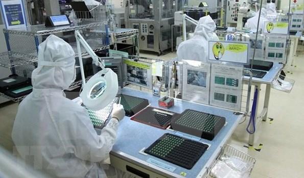 Vietnam enjoys major trade surplus with UAE hinh anh 1