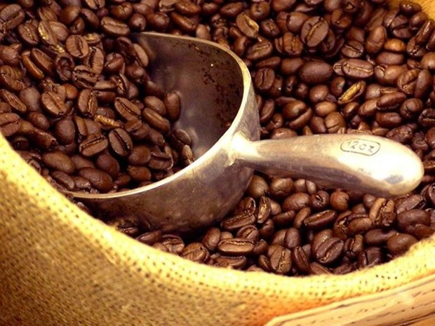Coffee industry aims to increase added value hinh anh 1