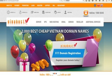 VN tops ASEAN with number of new domains hinh anh 1