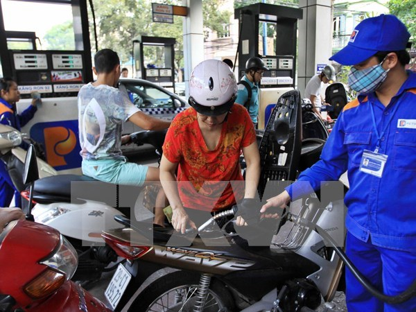 Government to keep close eye on cost of key products hinh anh 1