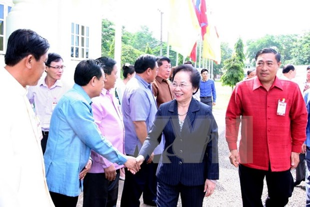Vietnamese Vice President visits Laos's Vientiane province hinh anh 1