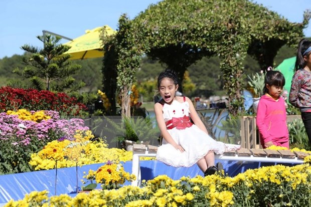 Da Lat flower festival kicks off with myriad of activities hinh anh 1