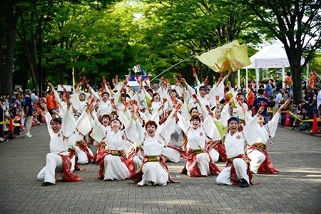 Japan-like cherry blossom festival Shinnen 2016 in Hanoi hinh anh 1