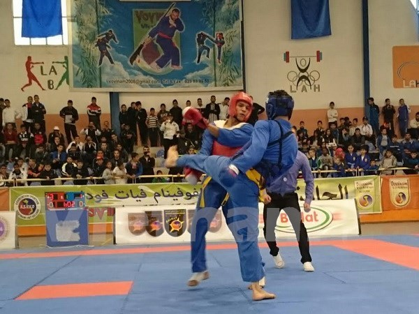 Algeria: national Vovinam championships enters final round hinh anh 1