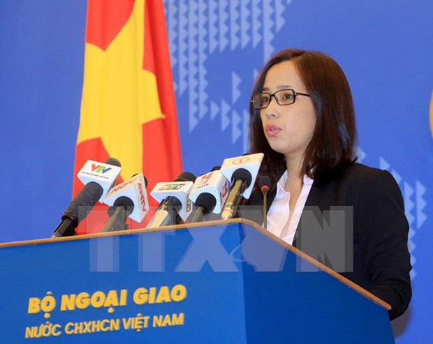Foreign Ministry deputy spokeswoman clarifies citizen protection hinh anh 1
