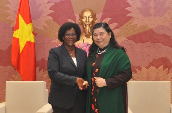 Vietnam, Mozambique forge legislative ties hinh anh 1