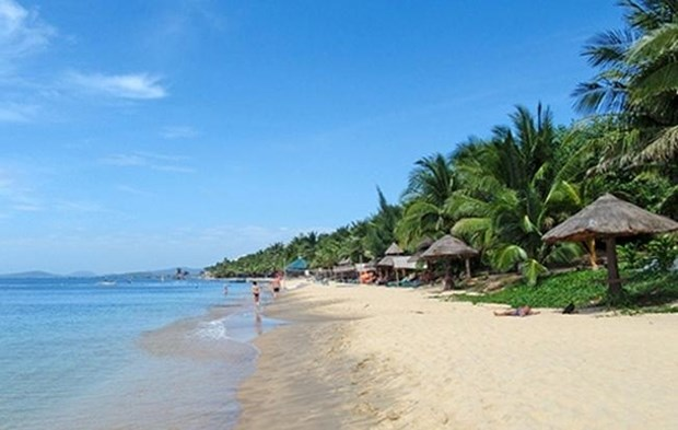 An Bang Beach voted in top 25 Asian beaches by TripAdvisor hinh anh 1