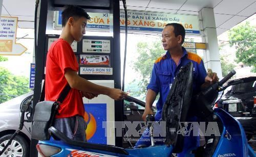 Diesel price rises while petrol kept unchanged hinh anh 1