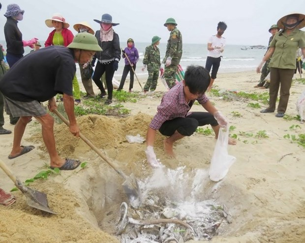 PM directs solutions in wake of mass fish deaths hinh anh 1