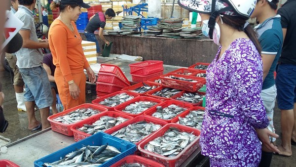 Central provinces put clean fish for sale amid poisoned fish fear hinh anh 1