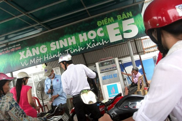 E5 petrol makers, distributors want more State support hinh anh 1