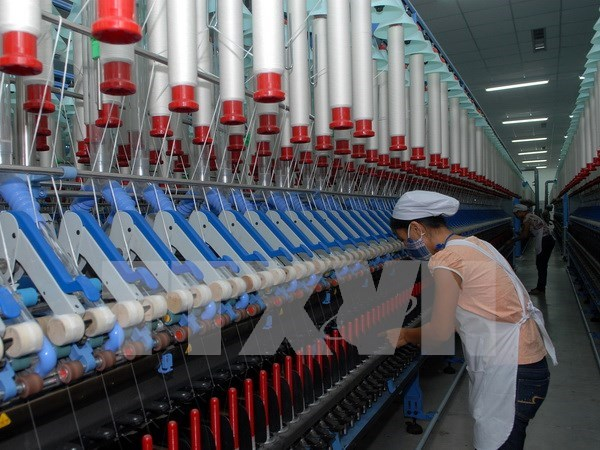 Fiber factory to be built in HCM City hinh anh 1