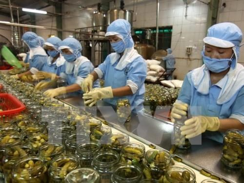 TPP to help Vietnamese businesses access Australian market hinh anh 1