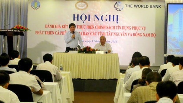 Credit policies enable sustainable coffee development hinh anh 1