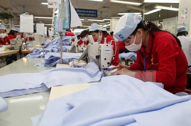 Russian official hails Vietnam-EAEU trade deal hinh anh 1