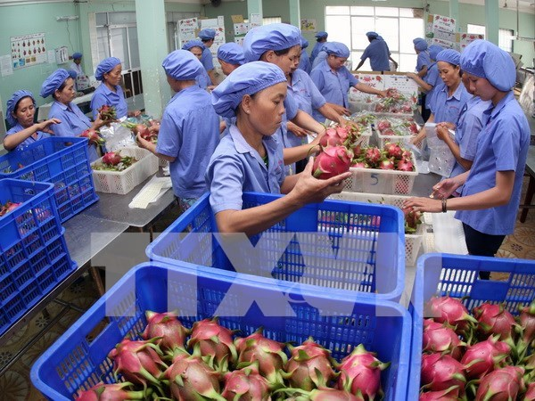 Southern localities urged to diversify trade promotion activities hinh anh 1