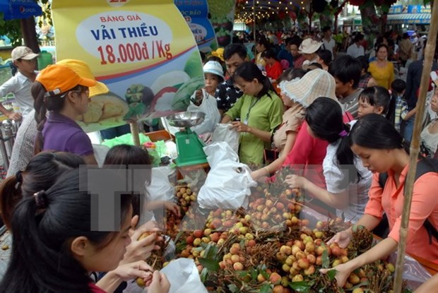 Southern fruit festival opens in HCM City hinh anh 1