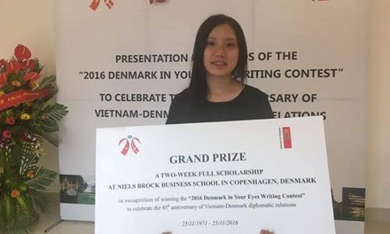 Writing contest marks Vietnam-Denmark diplomatic ties hinh anh 1