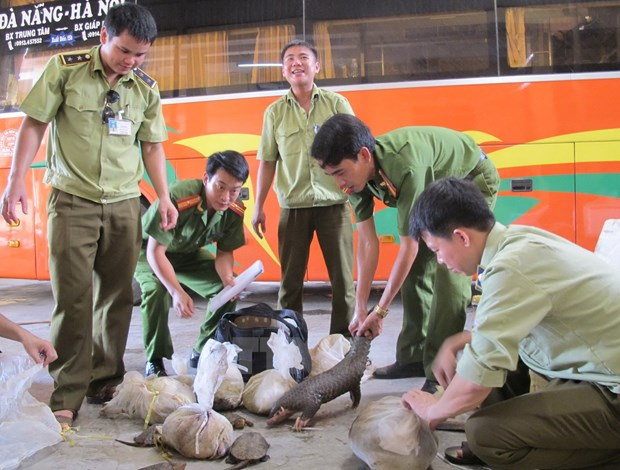Wild animals rescued from illegal trade hinh anh 1
