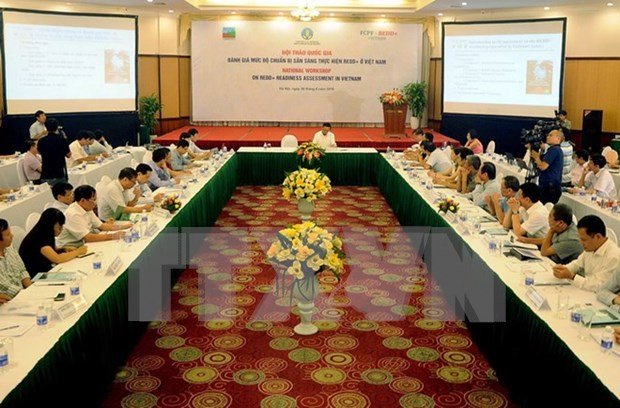 Conference assesses Vietnam's readiness to realise REDD+ hinh anh 1