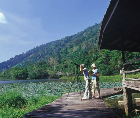 Holidaymakers suggested visiting Thailand's Thale Ban National Park hinh anh 1