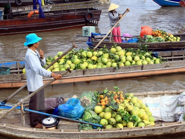 Cai Rang Floating Market Festival opens in Can Tho hinh anh 1